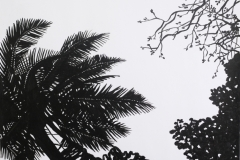 """""""Palm trees 2"""", March 2009, paper/acrylic"""
